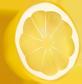 Zitronenbaum.info Logo