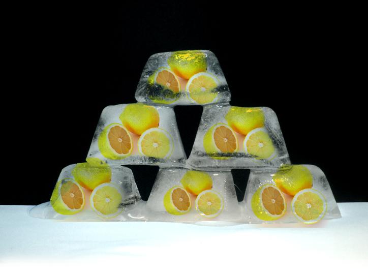 Zitronenbaum üeberwintern